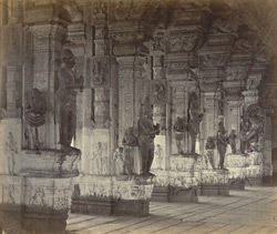Madura. Trimul Naik's Portico [Pudu Mandapa]. Carved pillars on south side